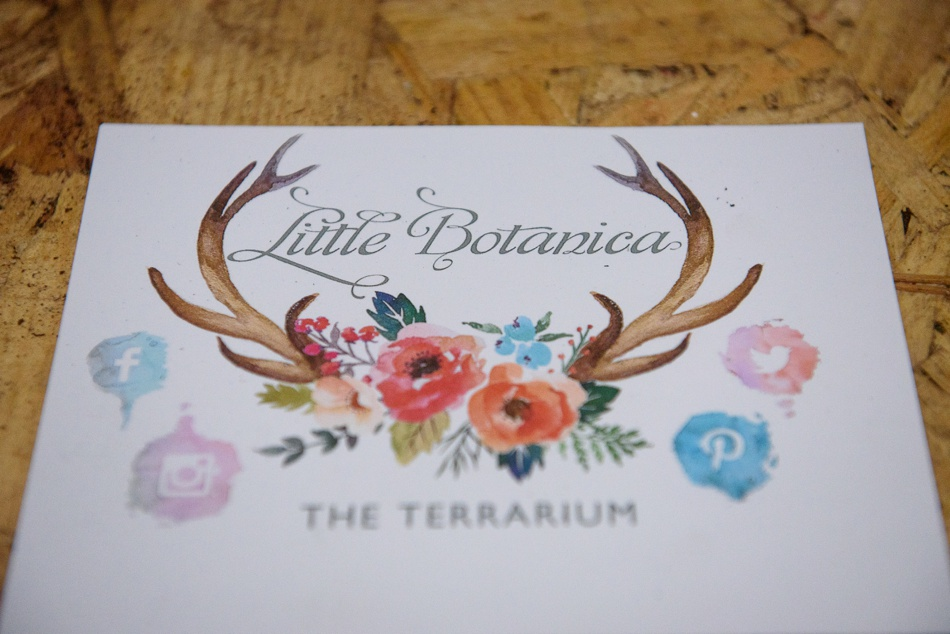 Little Botanica Terrarium Making Workshop Glasgow3