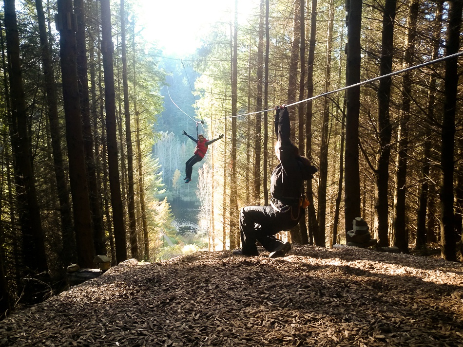 Rated Reviewed Go Ape Peebles